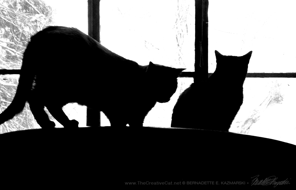 Wordless Wednesday: Silhouettes