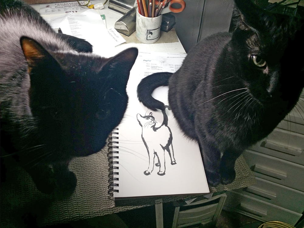 two black cats with sketch