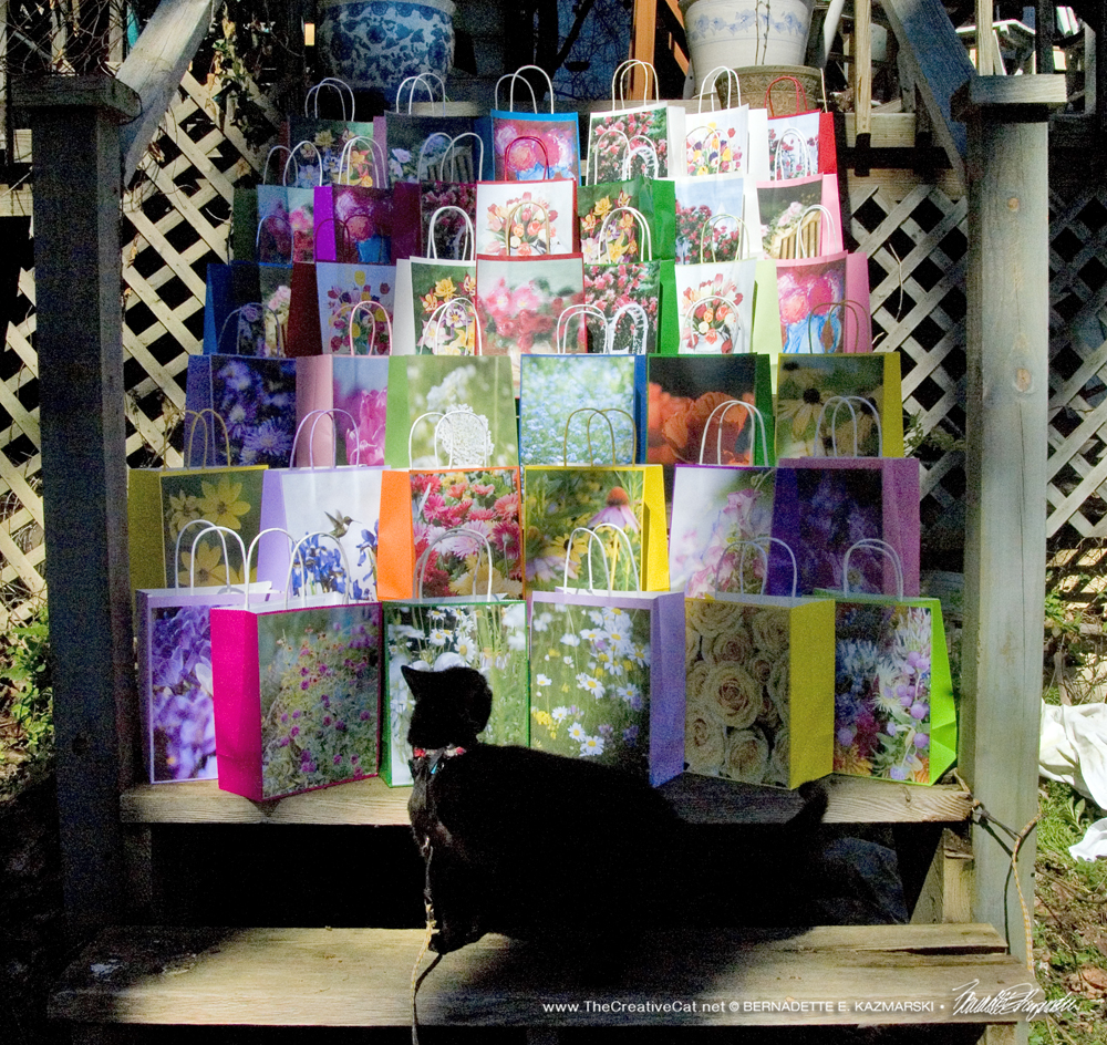Mimi looks at the the selection of gift bags we've made.
