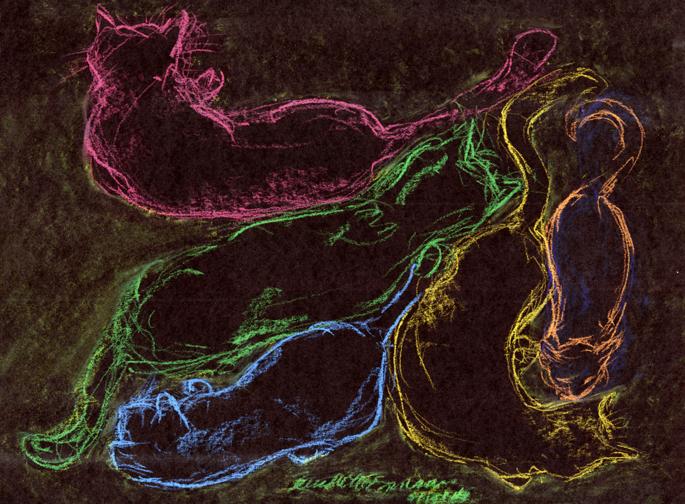 pastel sketch of cats on black paper