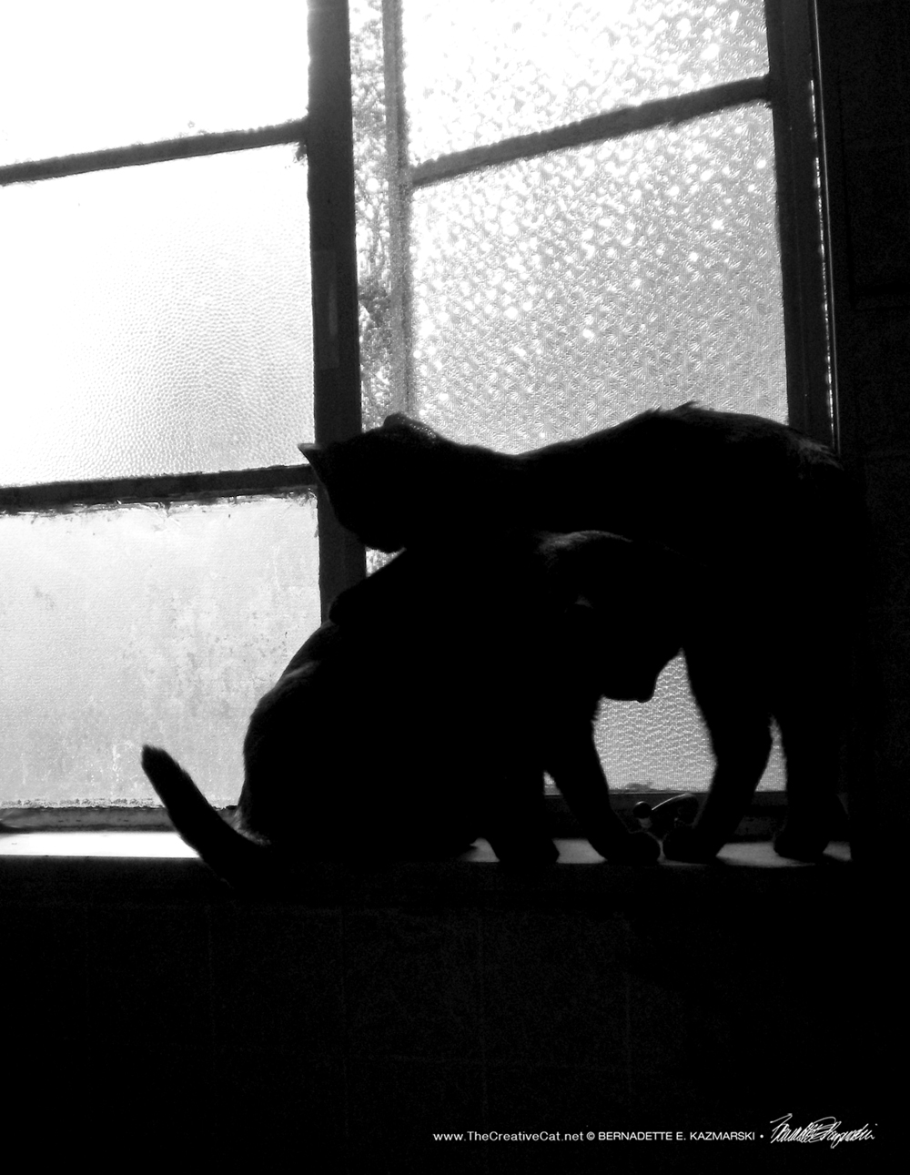 Passing on the windowsill.