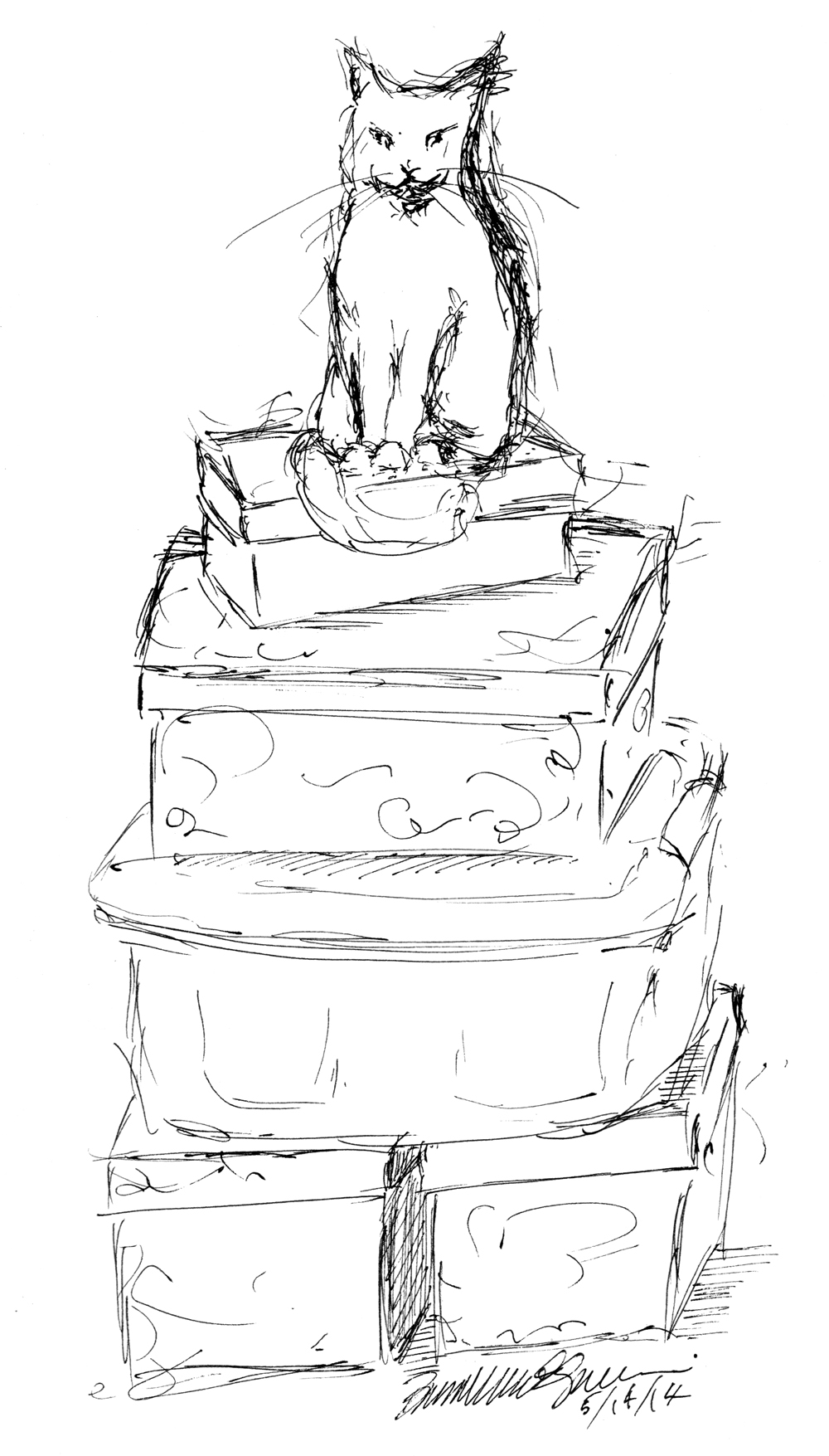ink sketch of cat sitting on boxes
