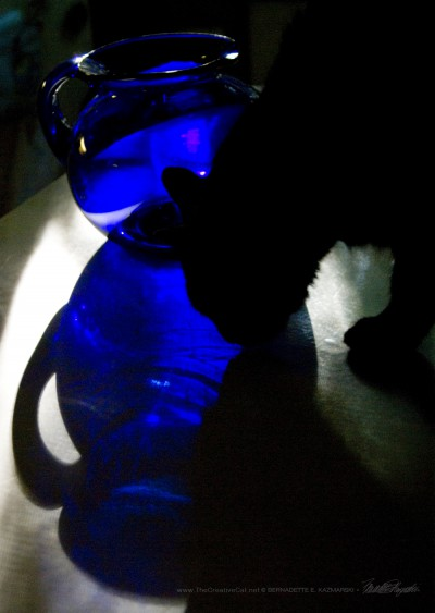 Blue Pitcher With Cat
