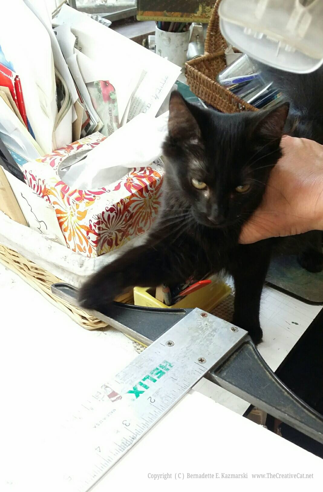 """Simon learns the meaning of """"no"""" while I'm working on some framing."""