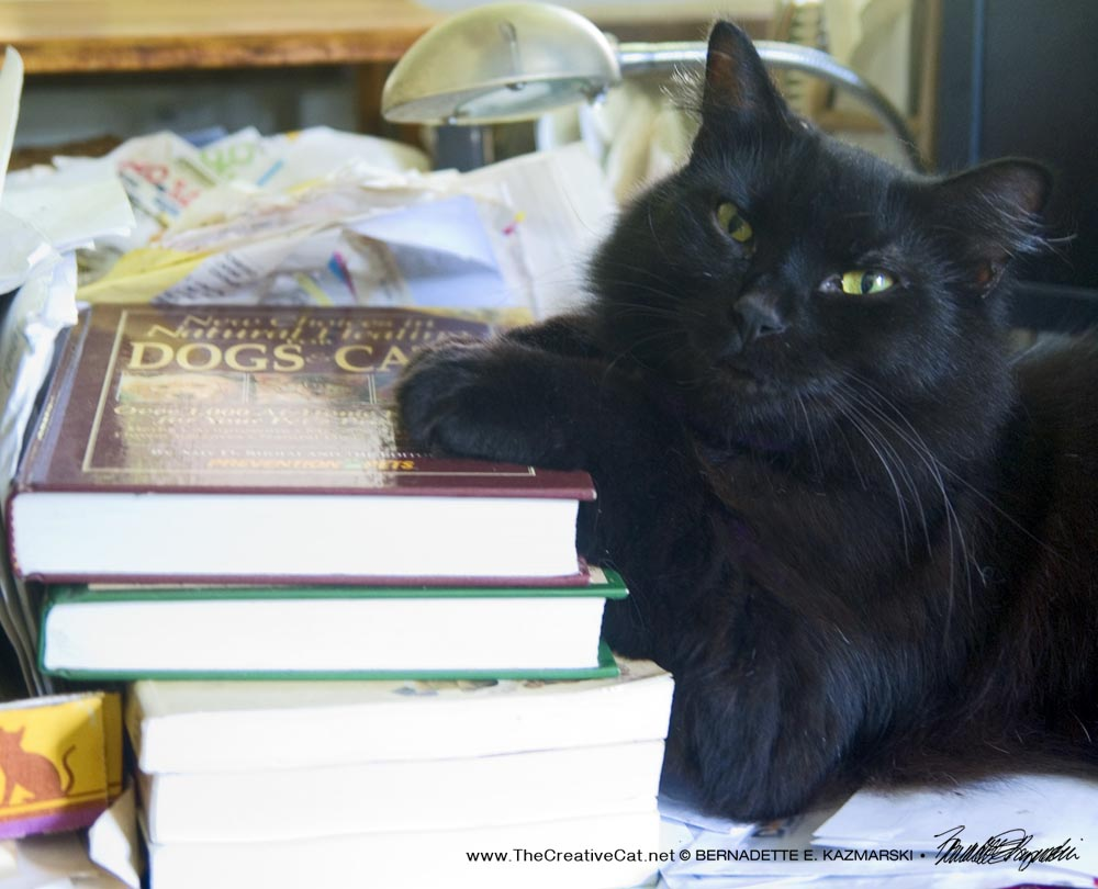 Basil Will Be Reading