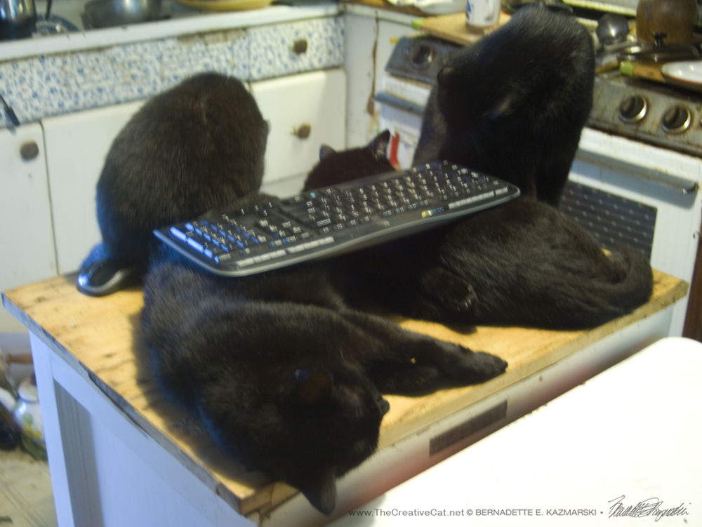 Black Cat Keyboard Rest with two Accessory Black Cats.