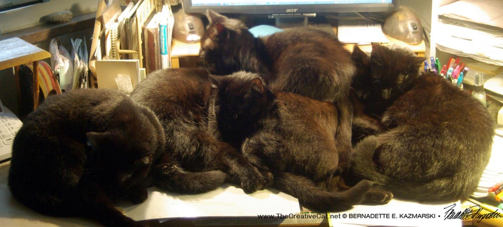 A Pile of Cats