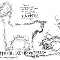 catnip cartoon with two cats