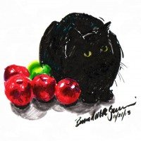 marker sketch of black cat with apples