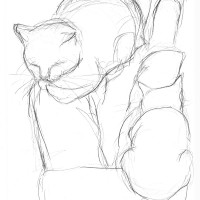pencil sketch of cats on lap