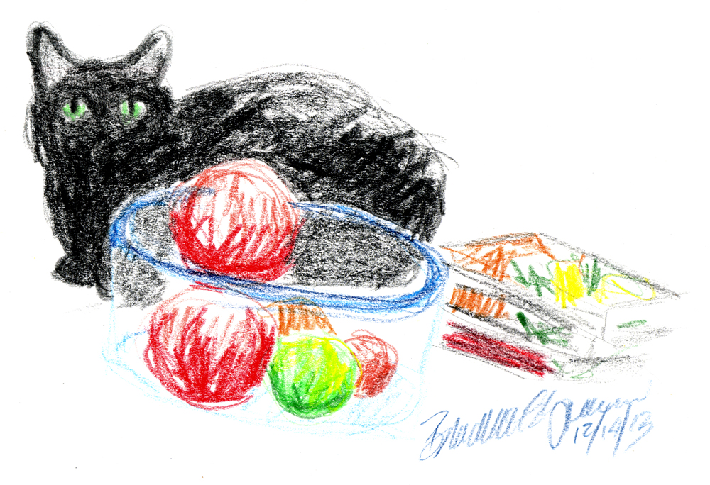colored pencil drawing of black cat with objects