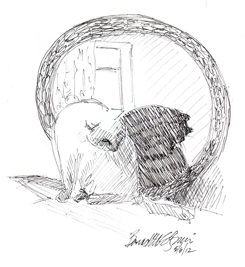 hand mirror sketch. Ink Sketch Of Cat Bathing In Front Round Mirror Hand N