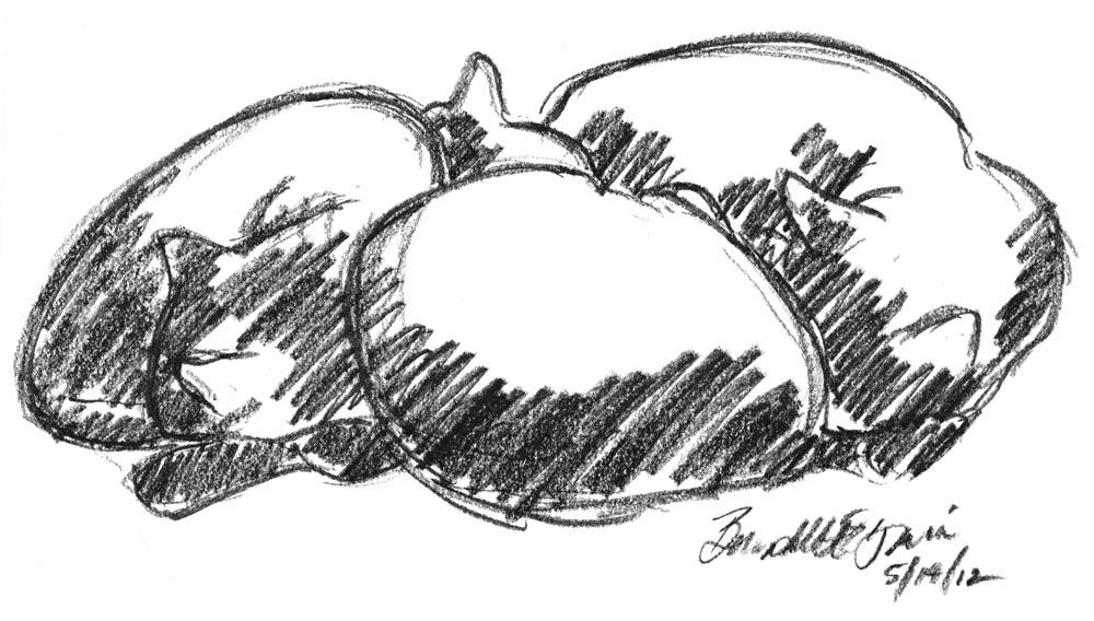 charcoal sketch of three cats sleeping