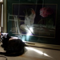 black cat sleeping in front of painting on floor