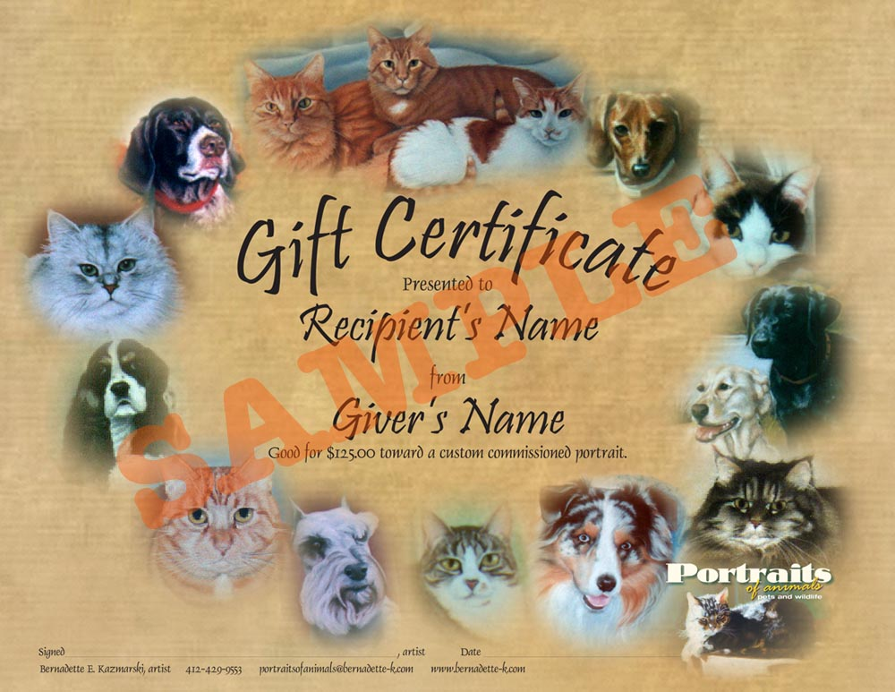 Gift certificates for commissioned portraits and merchandise the commissioned portrait dog dog portrait pastel pastel painting pet portrait yelopaper Images