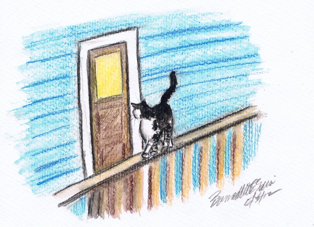 illustration of cat on railing outside door