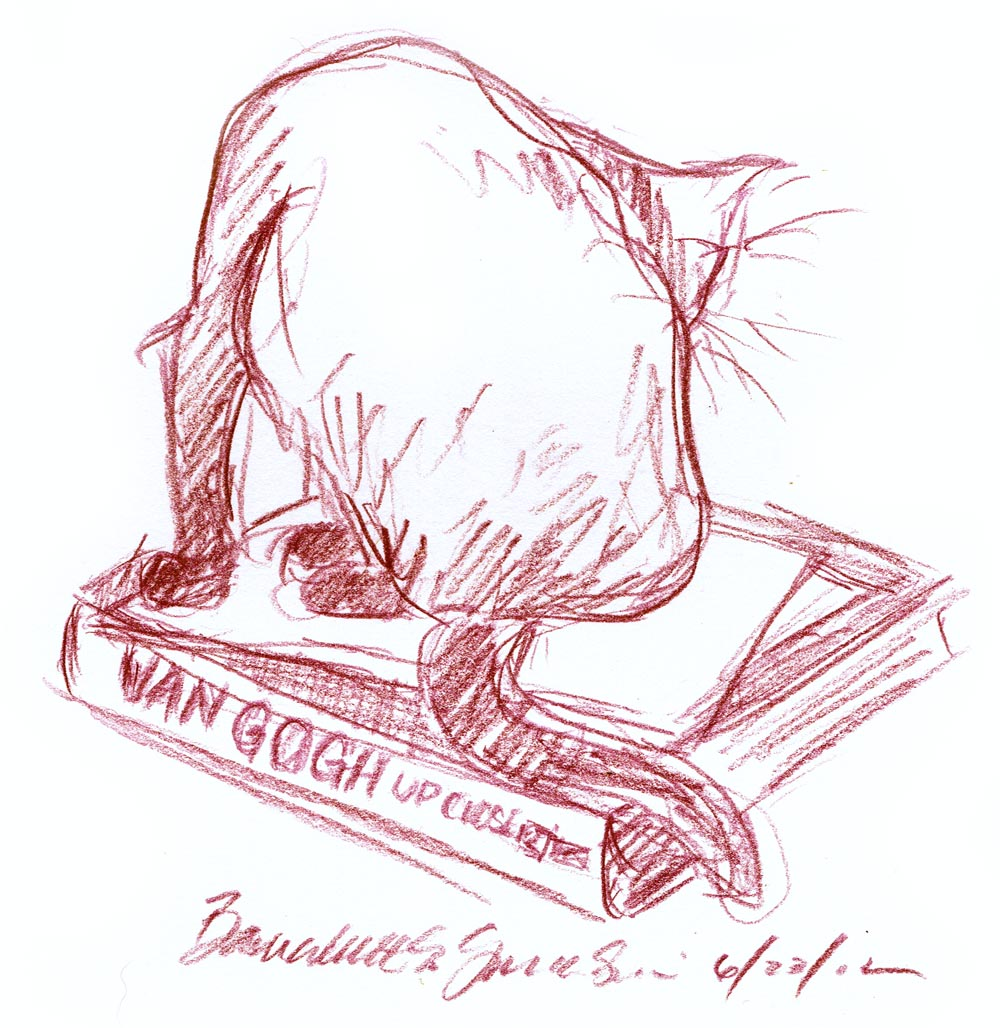 sketch of cat bathing on book