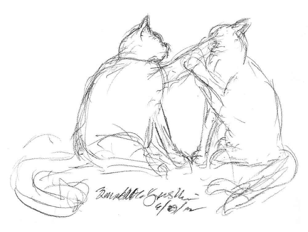 sketch of two cats fighting