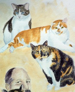 pencil and watercolor of three cats
