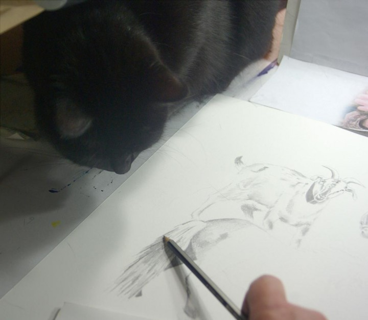 black cat watching pencil