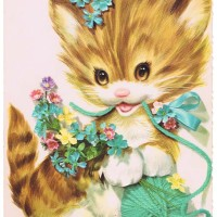 image of kitten birthday card
