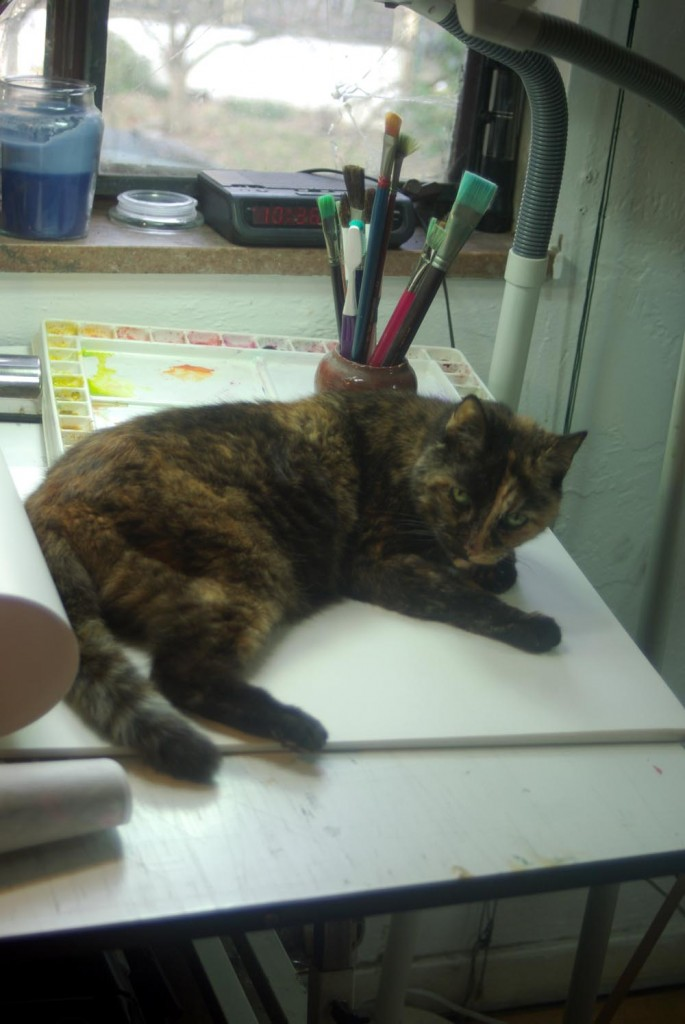 tortoiseshell cat on table with paintbrushes