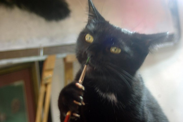 black cat with paintbrush