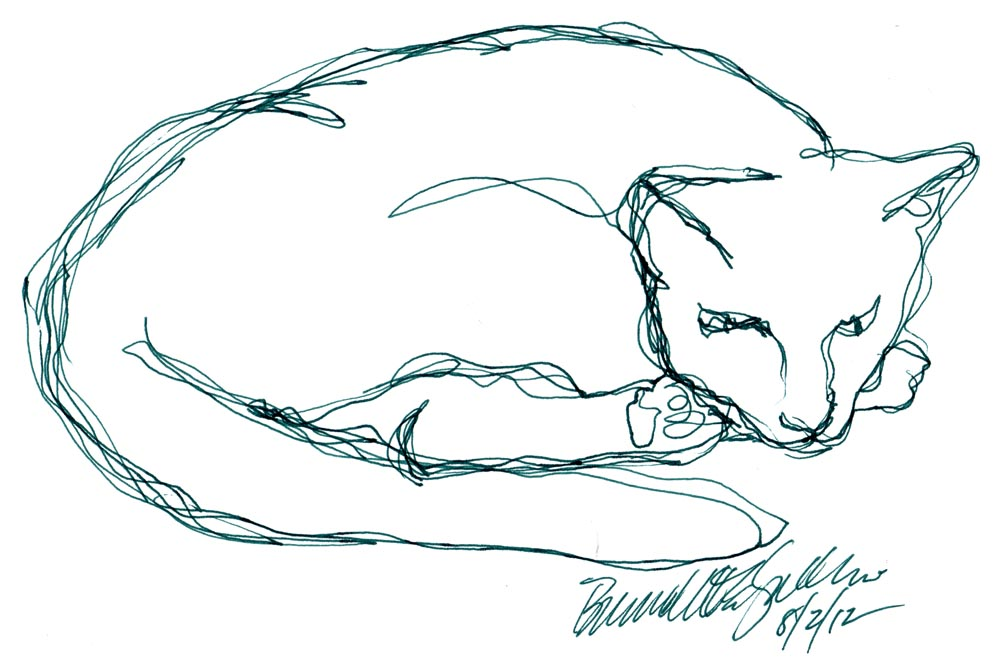 line sketch of cat