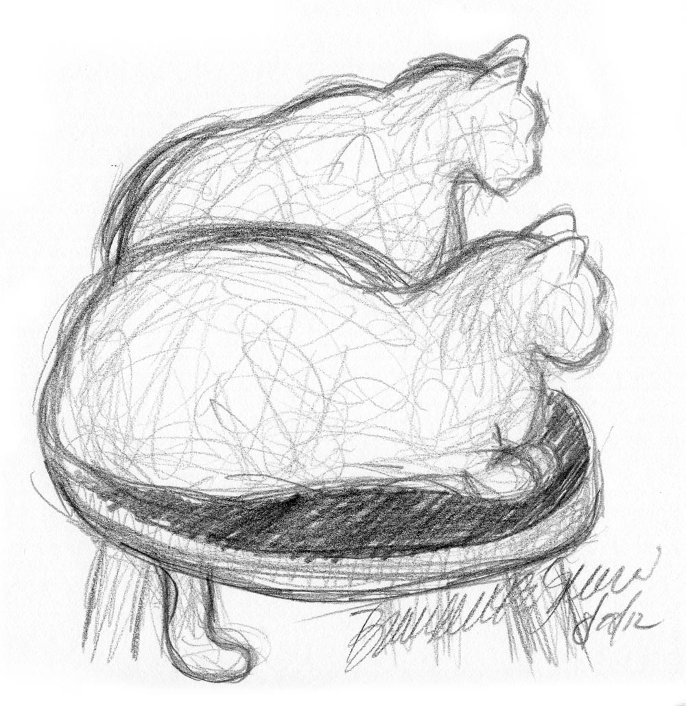 Daily Sketch: The Twist ~ The Creative Cat