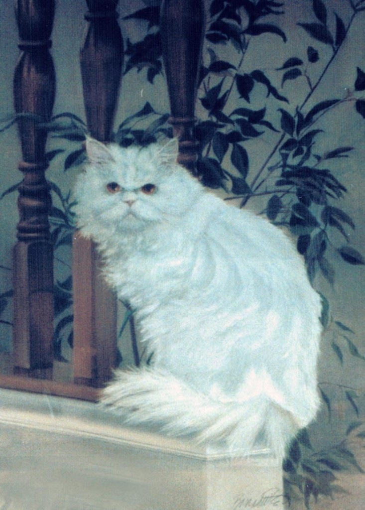 painting of white persian cat