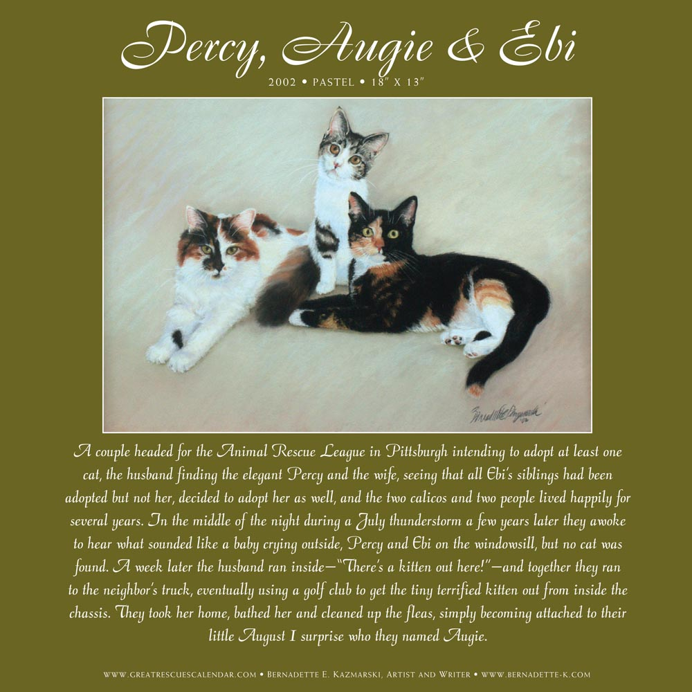 page in great rescues calendar and gift book and portrait of three cats