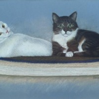 portrait of two cats on rug