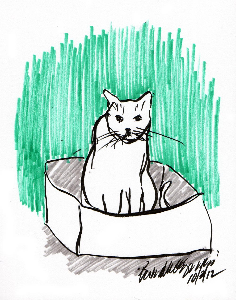 sketch of cat in box