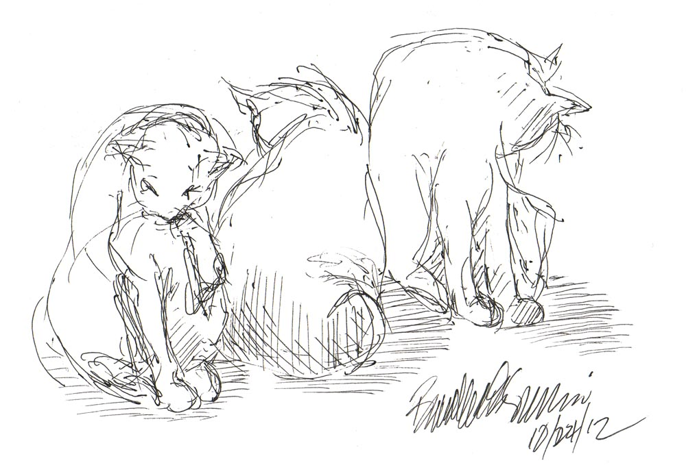 ink sketch of three cats bathing