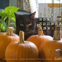 desktop calendar with black cat and pumpkins