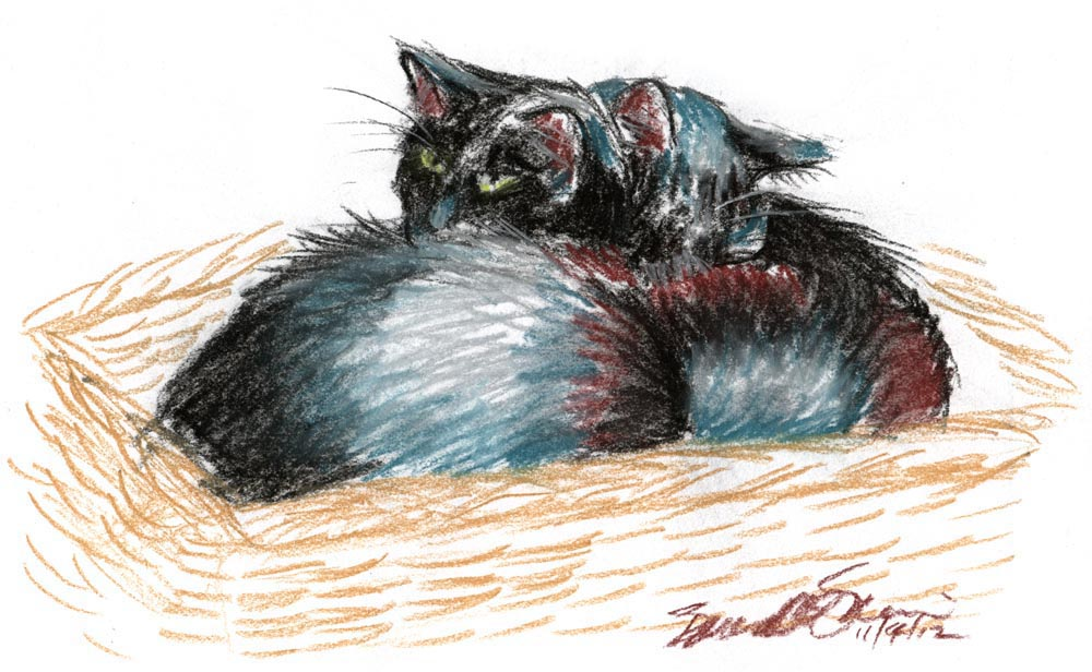 pastel sketch of two cats in basket