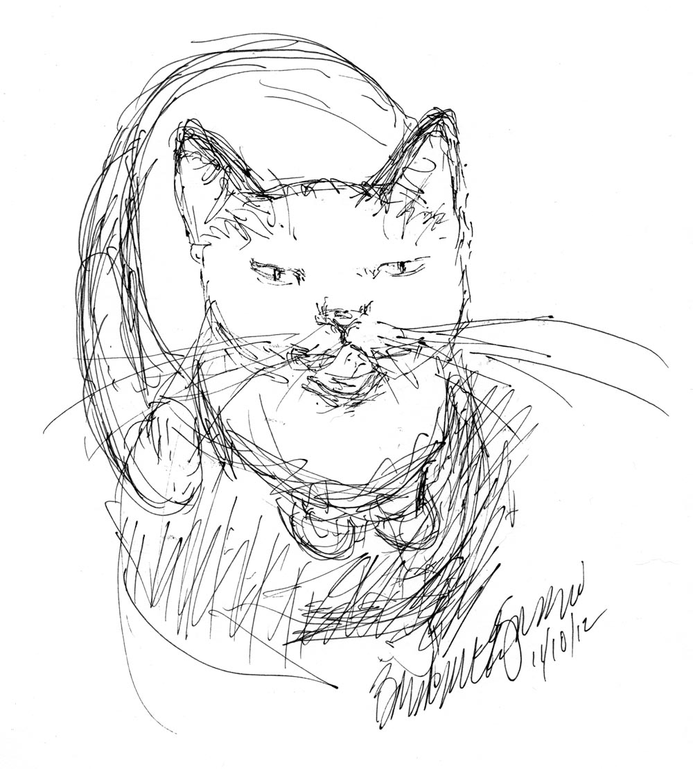 sketch of cat looking up