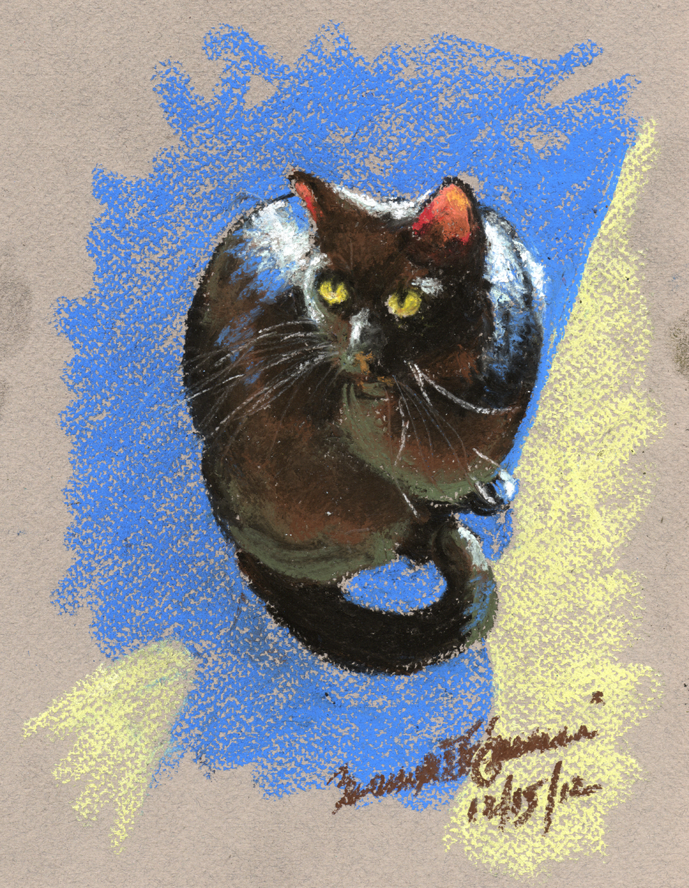 pastel sketch of black cat in sunshine