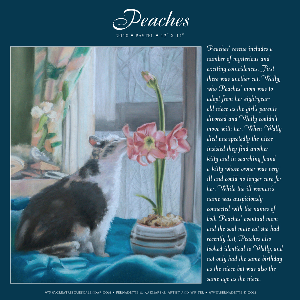 """Peaches' page from """"Great Rescues Day Book""""."""