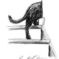 charcoal sketch of cat going up steps