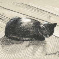 charcoal drawing of cat on floor