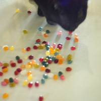 black cat with jelly beans