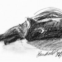 charcoal sketch of black cat sleeping