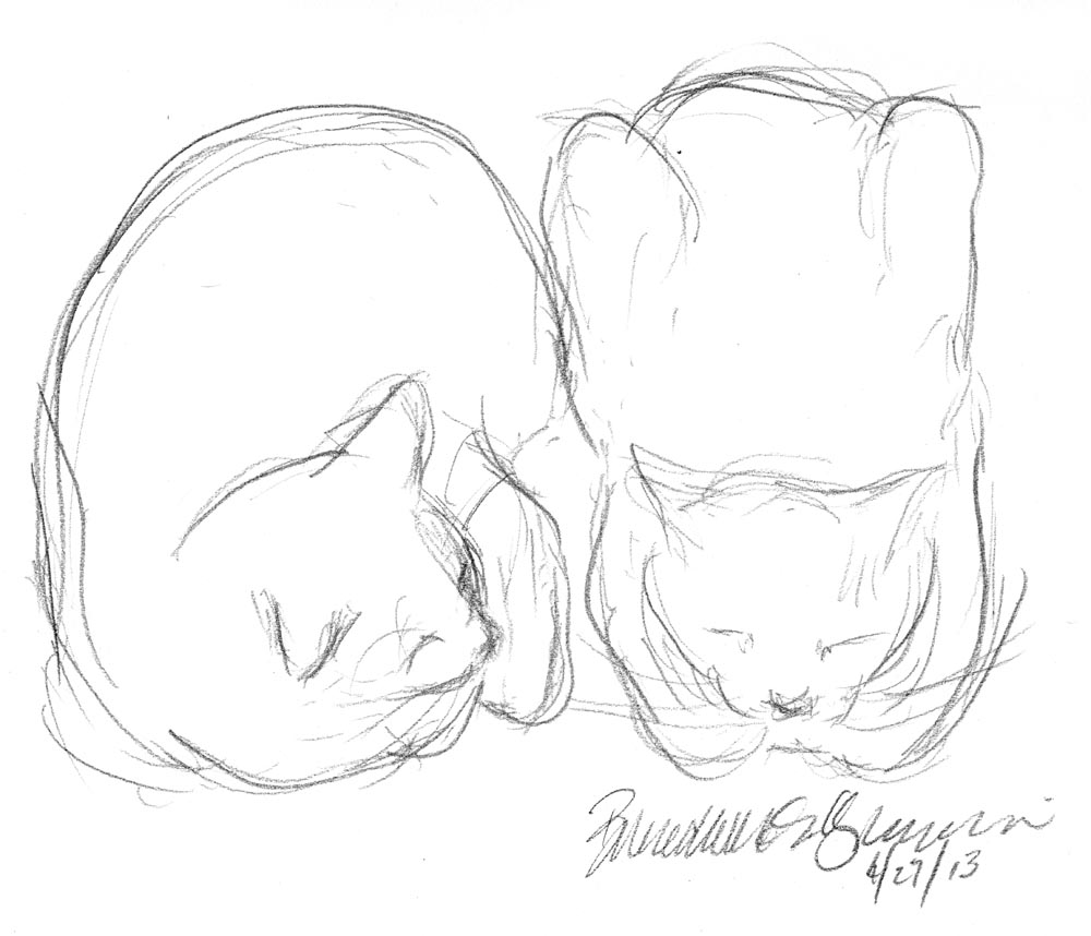 pencil sketch of two cats