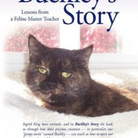 &quot;Buckley&#039;s Story&quot; by Ingrid King