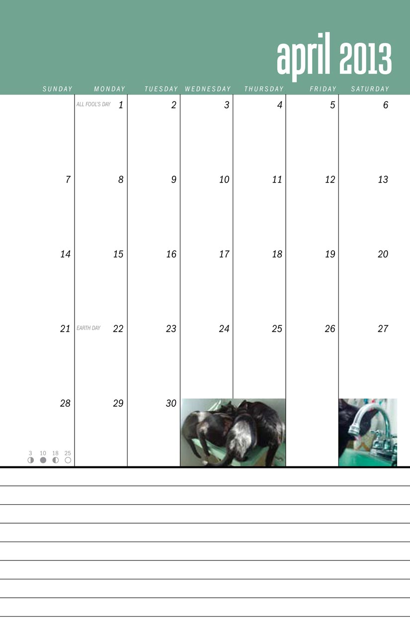 page from calendar compositions in black and green
