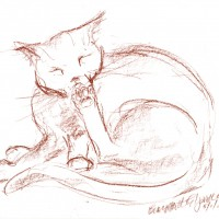 conte sketch of cat cleaning toes
