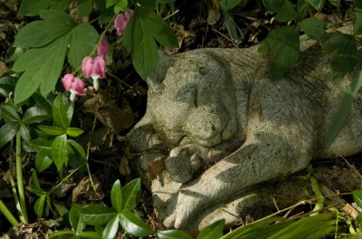 bleeding hearts and stone cat sculpture