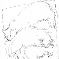 ink sketch of two cats sleeping