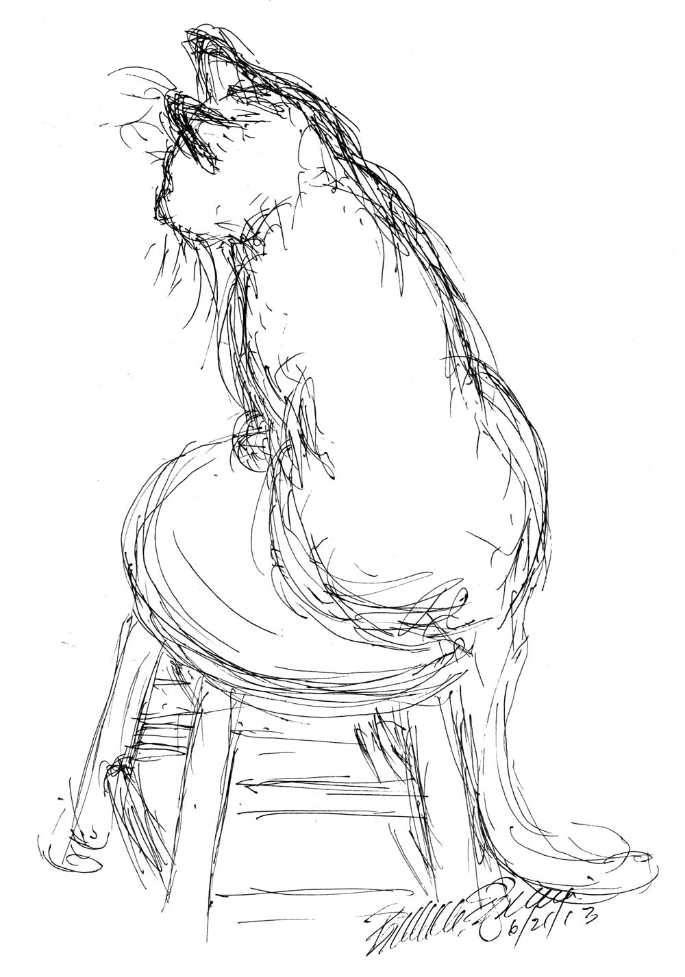 ink sketch of cat on stool